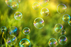 Air bubbles. On grass background. Abstract background Royalty Free Stock Images