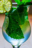 Air bubbles in the mint leaves in the mojito Royalty Free Stock Photo