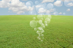 Air bubbles over green field Stock Photography