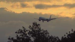 Air Canada Boeing 777 que se acerca en el amanecer almacen de metraje de vídeo