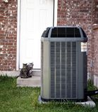 Air conditioner and two cats. Backyard with air conditioned close-up and tow cats Royalty Free Stock Images