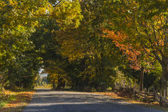 The air cools on the little road. Hiking on small roads in the fall. What better way to breathe clean air in the countryside and enjoy this beautiful nature and Royalty Free Stock Photography
