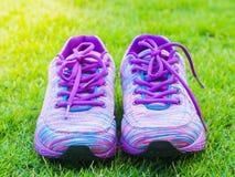 Air des chaussures et de la bouteille d'eau roses de sport sur le champ d'herbe verte Images libres de droits
