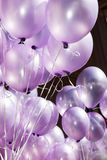 The air is filled with festive purple balloons. The air is filled with festive delicate purple balloons floating on strings at a celebration, festivity or Royalty Free Stock Images