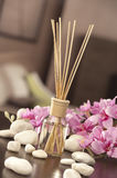 Air freshener sticks at home with flowers and ou of focus backgr Royalty Free Stock Image