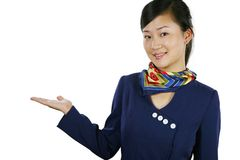 Air hostess Stock Image