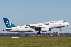Air New Zealand flygbuss A320 som tar av från Sydney Airport Arkivfoto