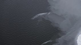 Air shot tilt up of frozen river with ice layers. Air pan shot from right to left shot tilt up of frozen river. Dark water of river in winter time shot from stock footage