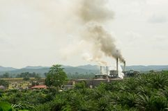 Air pollution. Produced by the palm oil factory Stock Photos