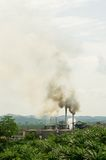 Air pollution. Produced by the palm oil factory Royalty Free Stock Image