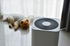 Free Air Purifier System Cleaning Dust Pm 2.5 Pollution In Living Room With Cute Dog Royalty Free Stock Photo - 170164415