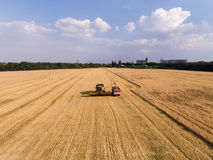 Air shot of harvester on the wheat field Royalty Free Stock Image