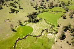 Air view of the Zlatibor mountain and Crni Rzav stream Royalty Free Stock Image