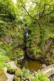 Aira下跌瀑布阿尔斯沃特湖Valley湖区Cumbria英国英国 免版税图库摄影