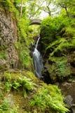 Aira力量瀑布阿尔斯沃特湖Valley湖区Cumbria英国英国 免版税库存图片