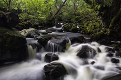 Aira Beck, Lake District, England. Long exposure with silky water of Aira Beck, Lake District, England flowing through woodland Stock Image