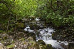 Aira Beck. Aira Beck, river near Ullswater in English Lake District, Cumbria, England, Uk Stock Photo