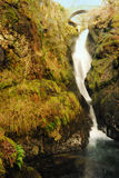 Aira Force Stock Image