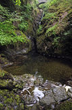 Aira Force Royalty Free Stock Image