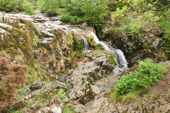 Aira Force Stock Images