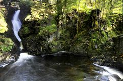 Aira Force Royalty Free Stock Photo