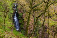Aira Force Waterfall, Cumbria, England, United Kingdom. Aira Force Waterfall, Lake District, Cumbria, England United Kingdom royalty free stock images