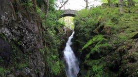Aira Force Waterfall stock video