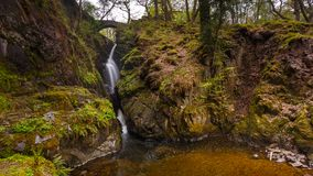 Aira styrkavattenfall, Cumbria, England, Förenade kungariket royaltyfri foto