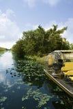 Airboat in de Grote Cipres van Everglades Florida Stock Foto