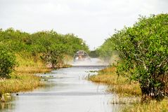 Airboat in Florida. Airboat gliding through the swamps of Everglades National Park royalty free stock photo