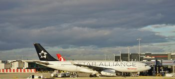 An Airbus A330 airplane from the Colombian airline Avianca (AV) with a Star Alliance livery Stock Photography