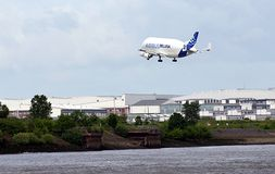 Airbus Beluga Stock Photo