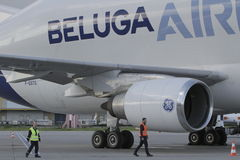 Airbus Beluga Royalty Free Stock Photography