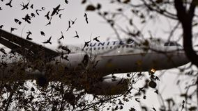 Airbus uni entrant pour un atterrissage photographie stock
