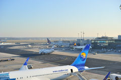 Aircraft and planes at Frankfurt airport Royalty Free Stock Images