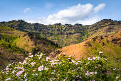 Aire de loisirs de ressortissant de canyon d'enfers Image stock