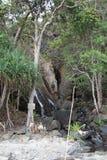 Aire de loisirs près d'un objet intéressant naturel - une cascade sur la côte de l'Océan Indien Philippines Photos stock