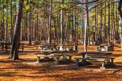 Aire de pique-nique de Studdard en parc en pierre de montagne, la Géorgie, Etats-Unis Photographie stock libre de droits