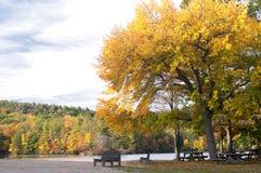 Aire de pique-nique en automne Image libre de droits
