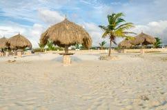 Aire de repos avec des palmiers par la plage dans Aruba Photos stock