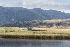 Aire flod, Victoria, Australien royaltyfria foton