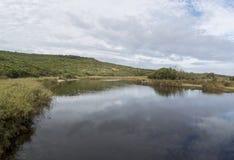Aire flod, Victoria, Australien fotografering för bildbyråer