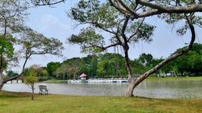 Aire fresco en parque verde y el lago limpio grande Imagen de archivo libre de regalías