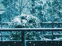 Aire libre de la caída de la nieve en el campo imágenes de archivo libres de regalías