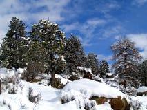 Aire quebradizo del invierno fotografía de archivo
