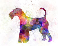 Airedale Terrier 01 in watercolor Stock Photo