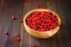 Airela, foxberry, arando, lingonberry em uma bacia de madeira em uma tabela de madeira marrom Imagens de Stock Royalty Free