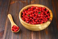 Airela, foxberry, arando, lingonberry em uma bacia de madeira em uma tabela de madeira marrom Imagem de Stock Royalty Free