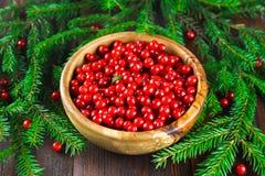 Airela, foxberry, arando, lingonberry em uma bacia de madeira em uma tabela de madeira marrom Cercado por ramos do abeto Imagem de Stock