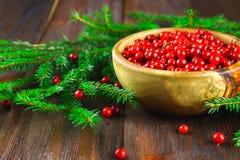 Airela, foxberry, arando, lingonberry em uma bacia de madeira em uma tabela de madeira marrom Cercado por ramos do abeto Fotos de Stock